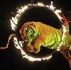 Цирки в Туринской Слободе